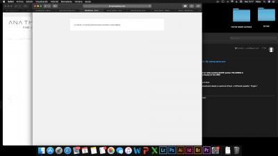 Captura de pantalla 2021 03 09 a las 12.17.20