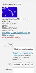 Captura de pantalla 2020 06 08 a las 13.45.22
