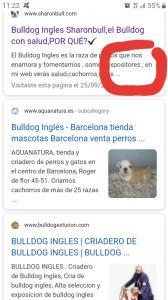 foro webempresa