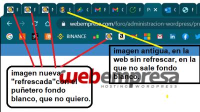 webempresa3