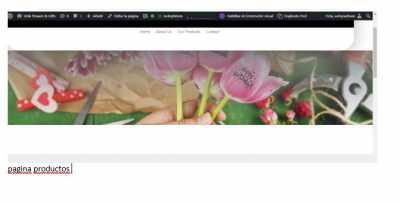 pagina productos
