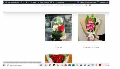 Productos pagina espanol