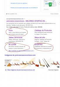 jamoneroseconomicos.com   Buscar con Google 1