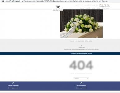 captura error 404