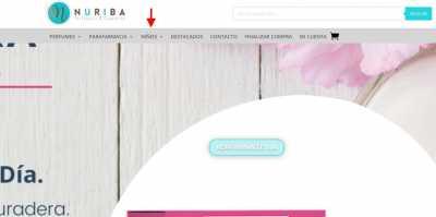 screenshot nuriba.com 2021.05.07 12 42 50