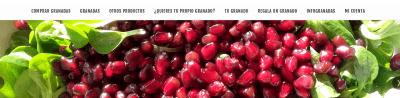 screenshot granadasecologicas.com 2020.04.26 20 48 31