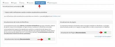 screenshot cp38.webempresa.eu 2083 2020.07.13 13 44 12 (1)