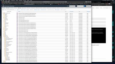 Captura de pantalla 2021 06 25 a las 11.13.04