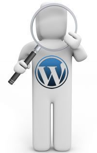 Configurar SEO en Wordpress