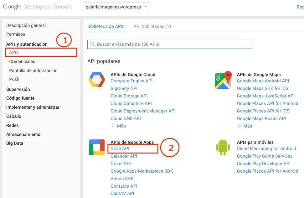Como obtener la API Key de Google Drive ¡para cualquier CMS!