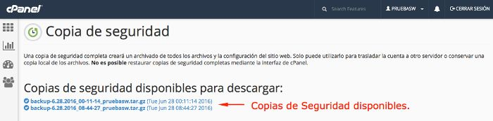 Copias de seguridad disponibles para descargar