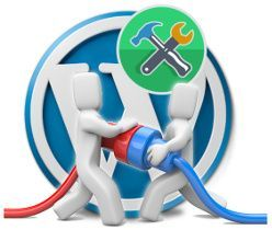 Optimiza la carga de plugins en WordPress