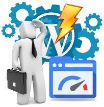 Forzar la limpieza de cache de scripts y estilos en WordPress
