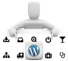 curso wordpress menus