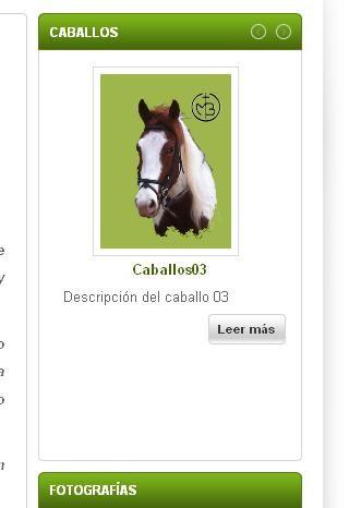 caballos01.jpg