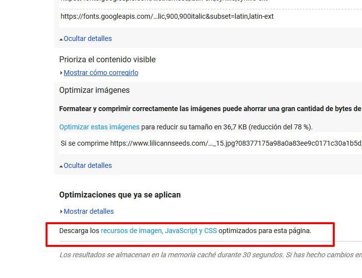 PageSpeedInsights.jpg