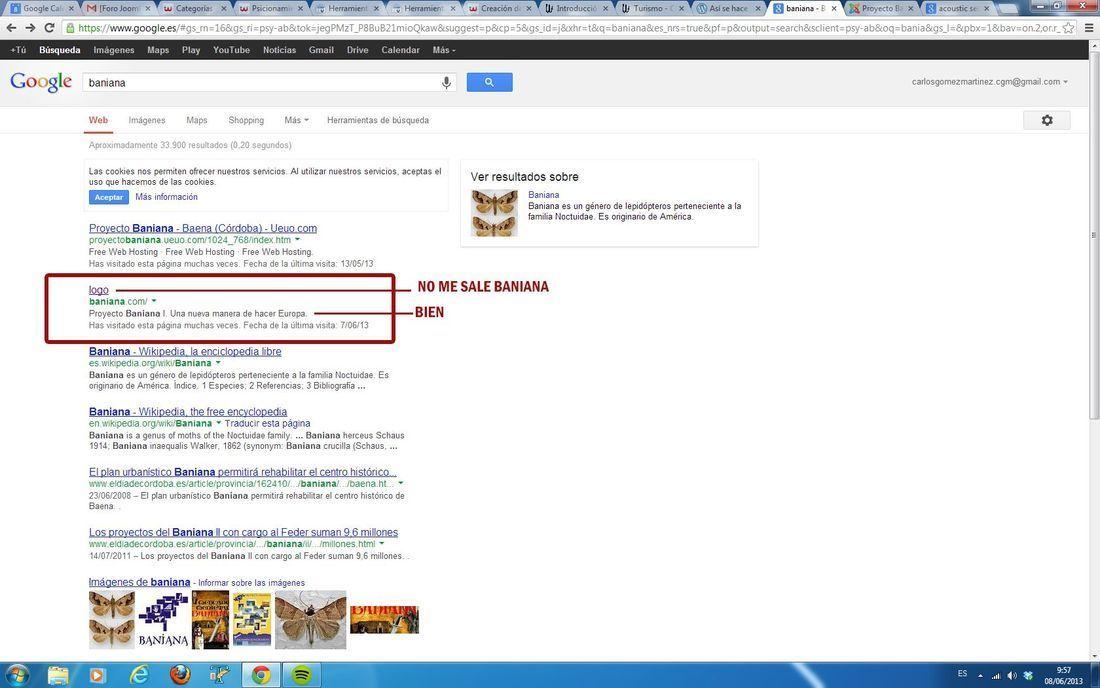 Nombre del sitio web en google