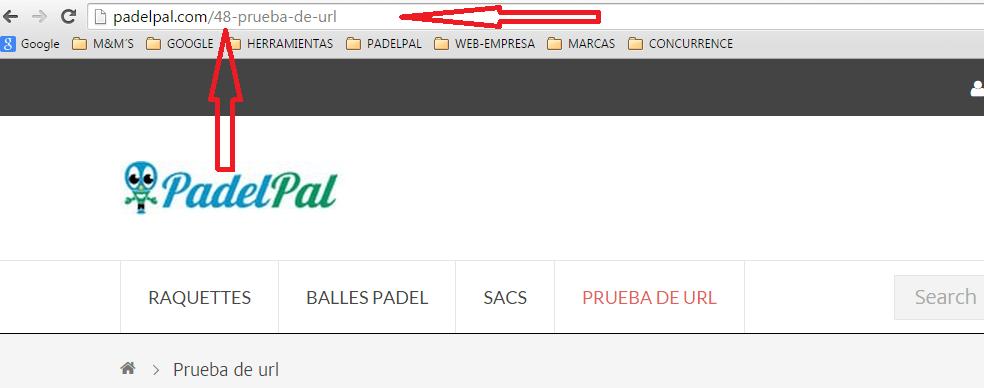 URLsucia.png