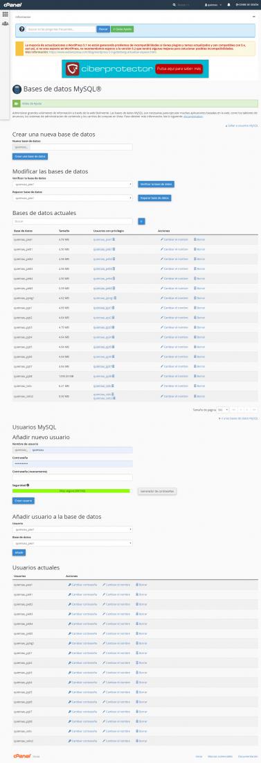 Webempresa-MySQL.png