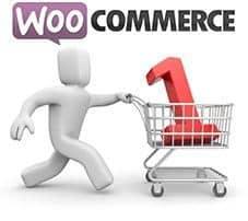 Define un máximo de productos en tu tienda de WooCommerce