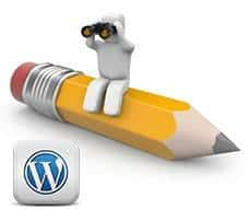 Insertar notas en WordPress