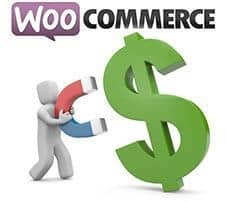 Conversor de divisas para WooCommerce