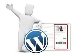 widgets populares wordpress