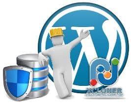 ¿Tu sitio WordPress tiene problemas? restaura la última copia de XCloner de forma sencilla