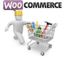 Personaliza los campos del proceso de compra de WooCommerce