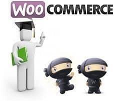 Uso de Shortcodes o códigos cortos en WooCommerce