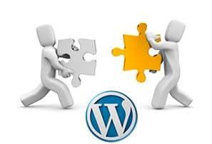 Modificar el Nombre de Usuario en WordPress