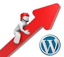 Mejora la velocidad y el SEO de tu sitio web comprimiendo ficheros JavaScript, CSS y HTML en WordPress