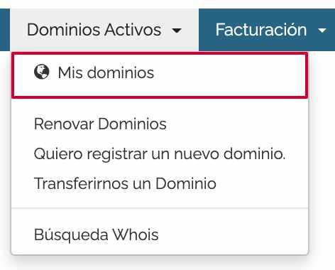Mis dominios area de cliente