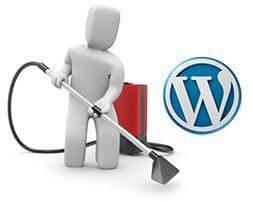 Realiza una limpieza y mejora el rendimiento de tu base de datos en WordPress