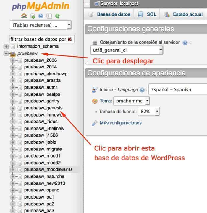Cambiar el usuario de WordPress desde phpMyAdmin