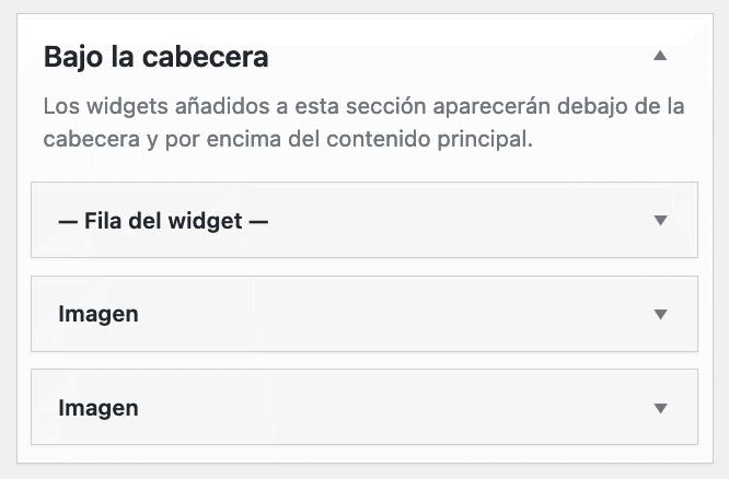 ejemplo uso Widgets en Columnas