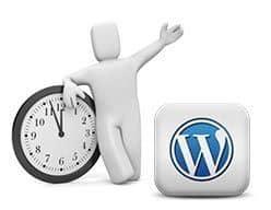 Insertar caducidad en las entradas de WordPress