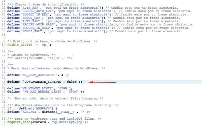 Insertar define en wp-config.php