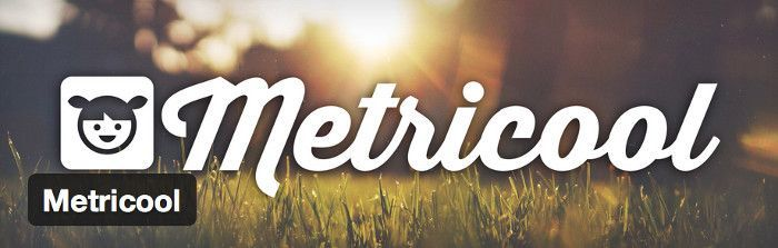 Metricool en WordPress
