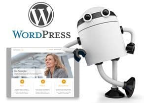 icono pack wordpress intuition
