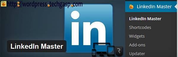 LinkedIn Master