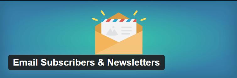 Cómo preparar una tienda WooCommerce para vacaciones: Email subscribers & newsletter