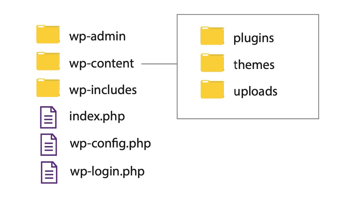 Principales subcarpetas WordPress