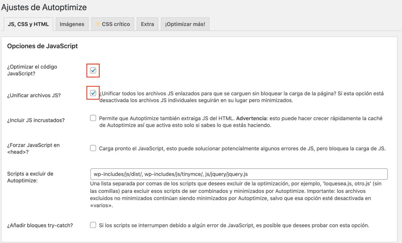 Opciones JavaScript Plugin Autoptimize
