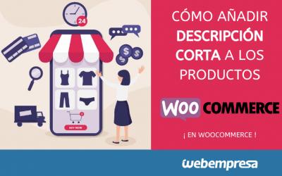 Añadir descripción corta a productos en WooCommerce