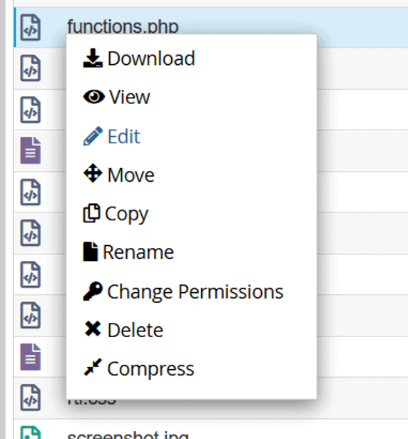 Editar Archivo functions.php