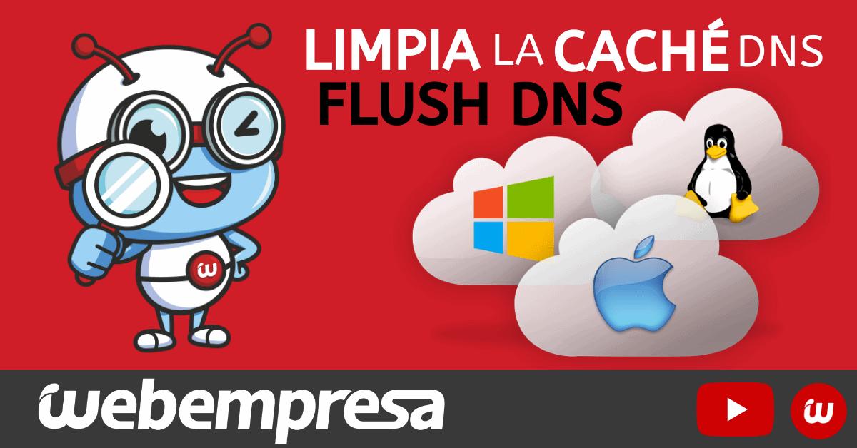 ¿Cómo limpiar la caché DNS de tu ordenador? (flush DNS)