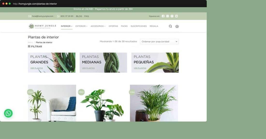 Página web Homy Joungle